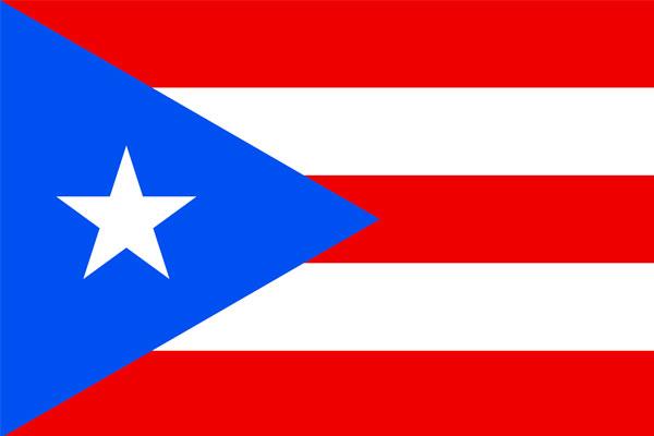 Puerto Rico Online Ordination